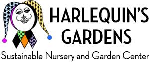 Harlequins Gardens